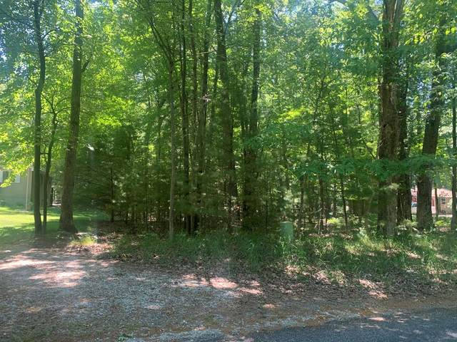 Lot 127 Wayne Road, Pentwater Twp, MI 49449 (#67021000636) :: Real Estate For A CAUSE