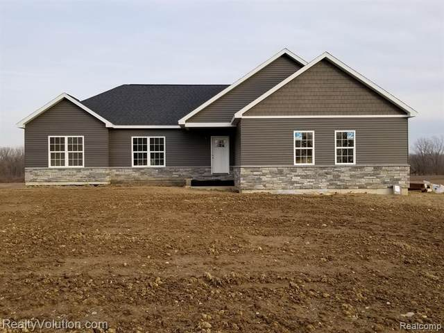 TBD Newark Road, Imlay Twp, MI 48444 (#2210001929) :: The Mulvihill Group