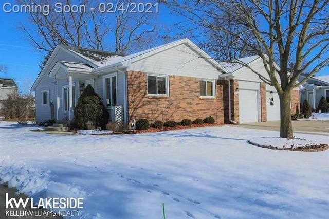 46721 Shelby Ct, Shelby Twp, MI 48317 (#58050033339) :: The Merrie Johnson Team
