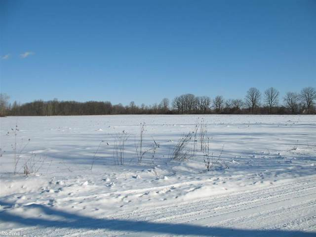 0 Scotch Settlement Rd, Almont Twp, MI 48003 (MLS #58050033841) :: The John Wentworth Group