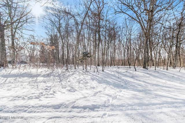 Limberlost Road, Lockport Twp, MI 49093 (#68021004156) :: RE/MAX Nexus