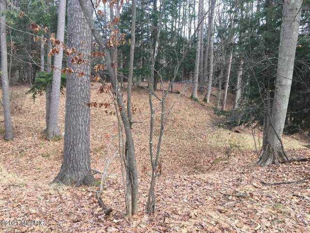 V/L Lost Canyon Road, Pentwater Twp, MI 49449 (#67021004214) :: Real Estate For A CAUSE