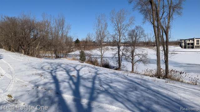 000 Dequindre - Parcel B (3.15 Acres), Washington Twp, MI 48095 (MLS #2210010048) :: The Toth Team