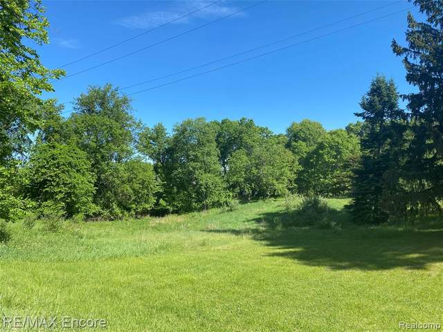 00 Mill Street, Ortonville Vlg, MI 48462 (#2210011457) :: Real Estate For A CAUSE