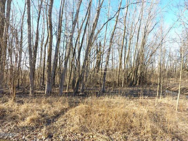 TBD E Main St, Out Of Area, MI 48853 (#59021008792) :: The Merrie Johnson Team