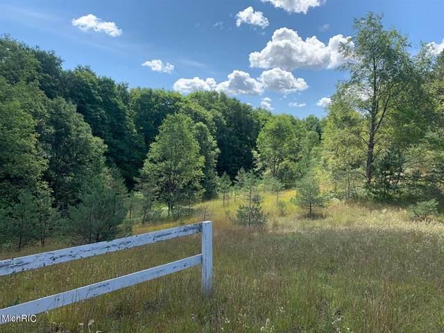 190 E 22 1/2 Road, Cedar Creek Twp, MI 49663 (MLS #72021010411) :: The John Wentworth Group
