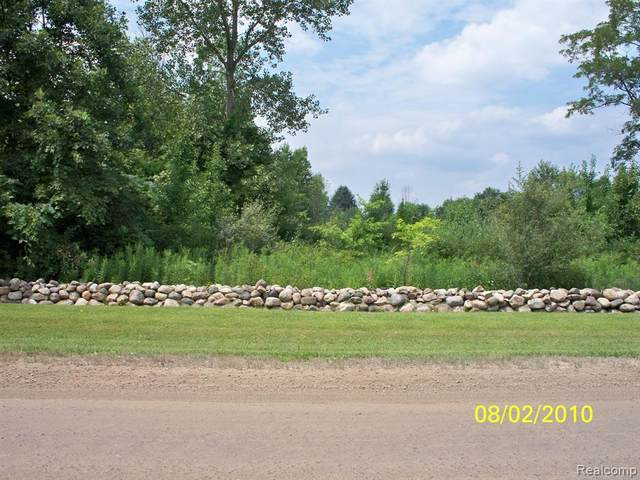 00 Mc Kay Road, Bruce Twp, MI 48065 (#2210022343) :: Real Estate For A CAUSE