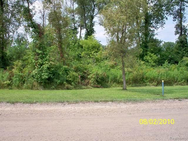 00 Mc Kay Road, Bruce Twp, MI 48065 (#2210022345) :: The Alex Nugent Team | Real Estate One