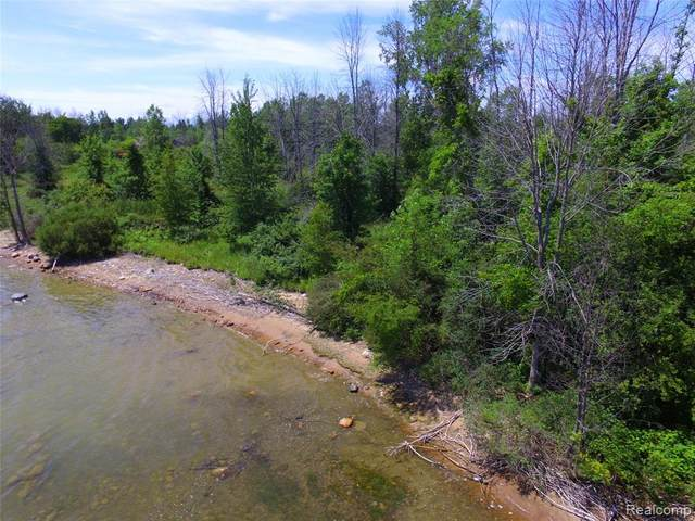TBD Sunshine Trail, Gore Twp, MI 48468 (#2210026444) :: Real Estate For A CAUSE