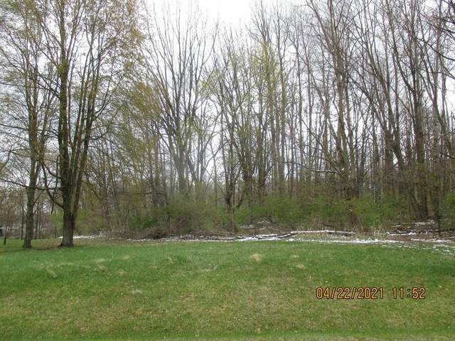 6135 Sweet Clover Hills Dr, FAYETTE TWP, MI 49250 (#62021013117) :: Real Estate For A CAUSE