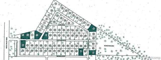 0000 Maple Valley Road, Brown City, MI 48416 (#2210028217) :: Real Estate For A CAUSE
