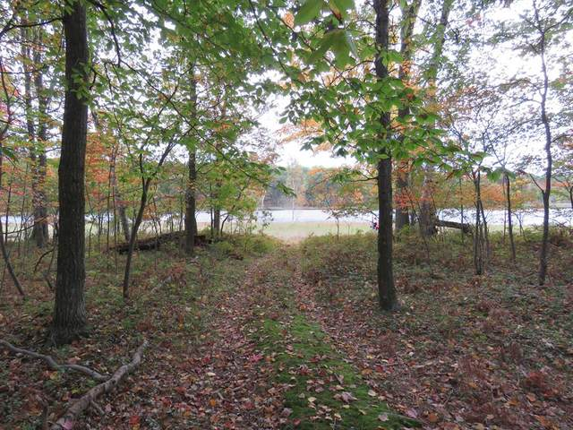 (lot 335) Alpine Drive, Cedar Twp, MI 49677 (#72021014049) :: RE/MAX Nexus