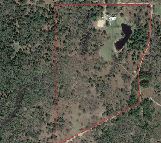 5960 North Trail Se, Orange Twp, MI 49646 (#53021015034) :: Novak & Associates