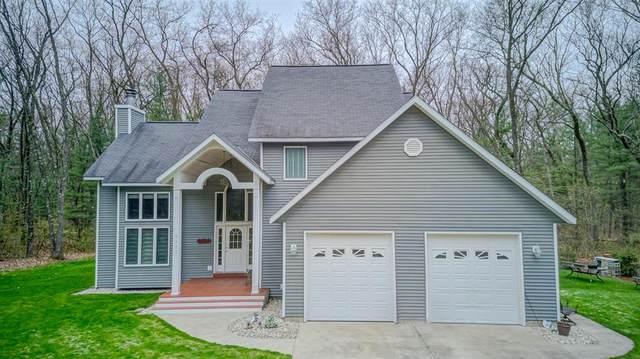 3393 Holton-Duck Lake Road, Cedar Creek Twp, MI 49457 (#71021016122) :: GK Real Estate Team