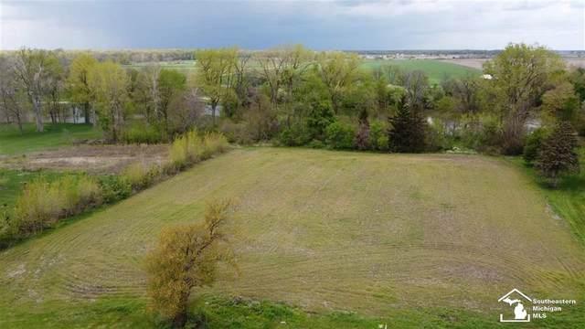 Dixon, Raisinville Twp, MI 48161 (#57050041403) :: Real Estate For A CAUSE