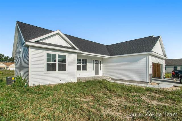 293 Plum Lane, Coopersville, MI 49404 (#65021017043) :: Real Estate For A CAUSE