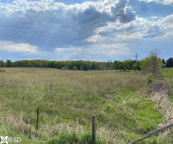 N Summers Rd, Attica Twp, MI 48444 (#58050041830) :: Real Estate For A CAUSE