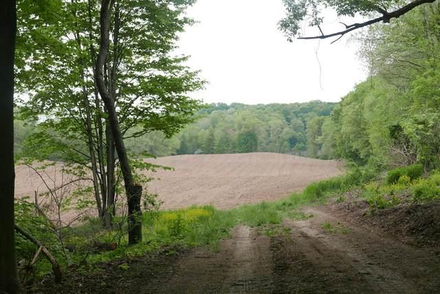 82 acres N 47th Street, Ross Twp, MI 49012 (#66021017568) :: Alan Brown Group