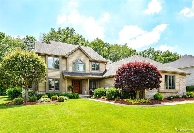 13912 Bridgewater Court, Green Oak Twp, MI 48178 (#2210039755) :: Duneske Real Estate Advisors