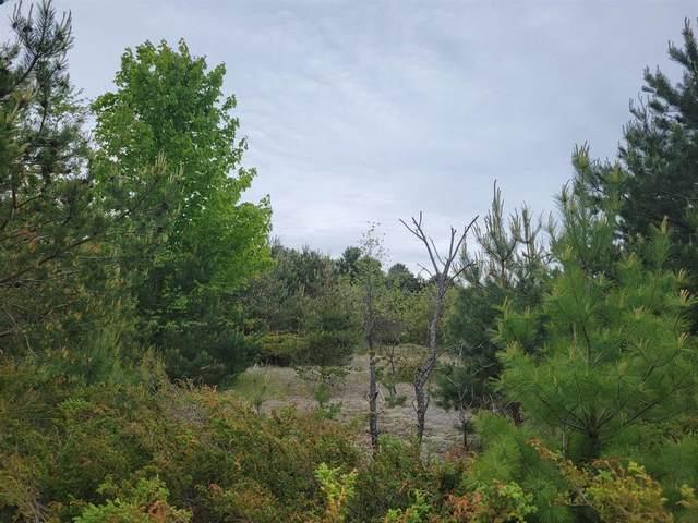 Vacant Lot Clinton, Bear Lake Twp, MI 49614 (#67021019465) :: Alan Brown Group