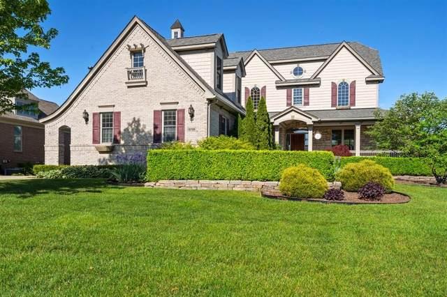 10709 Stoney Point Drive, Green Oak Twp, MI 48178 (#543281543) :: Duneske Real Estate Advisors