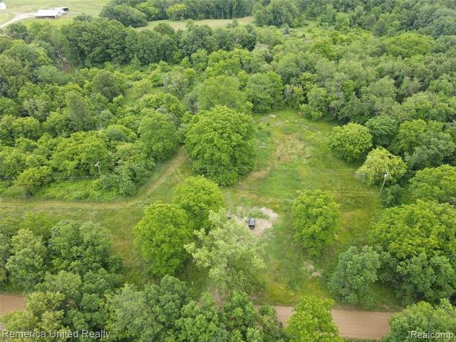 8238 Fish Lake Rd, Rose Twp, MI 48442 (#2210047512) :: Real Estate For A CAUSE