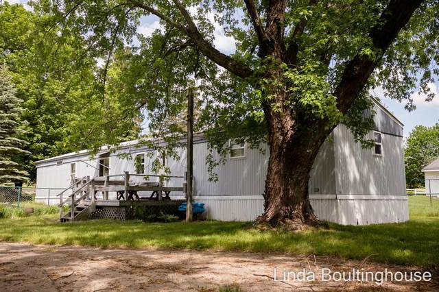 1150 N Greenville Road, PINE TWP, MI 48888 (#65021023696) :: Real Estate For A CAUSE