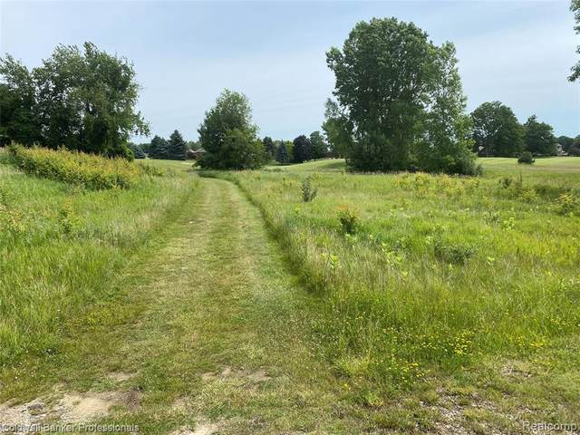 19 Masters Drive, Metamora Twp, MI 48455 (#2210049077) :: Real Estate For A CAUSE