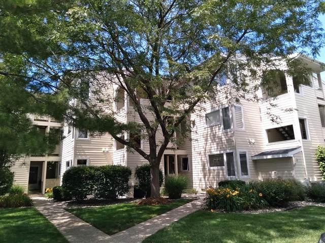 983 Lake Street #5, Saugatuck, MI 49453 (#71021024750) :: Novak & Associates