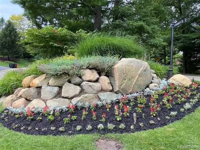 9352 Lake Ridge Drive, Springfield Twp, MI 48348 (#2210058577) :: Novak & Associates