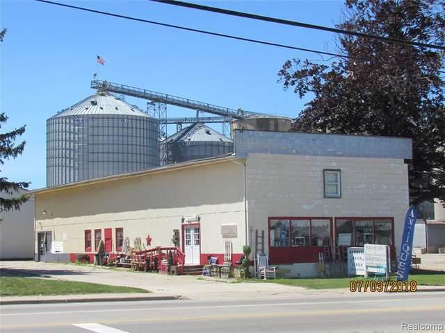 3370 Main Street, Marlette, MI 48453 (#2210087142) :: National Realty Centers, Inc