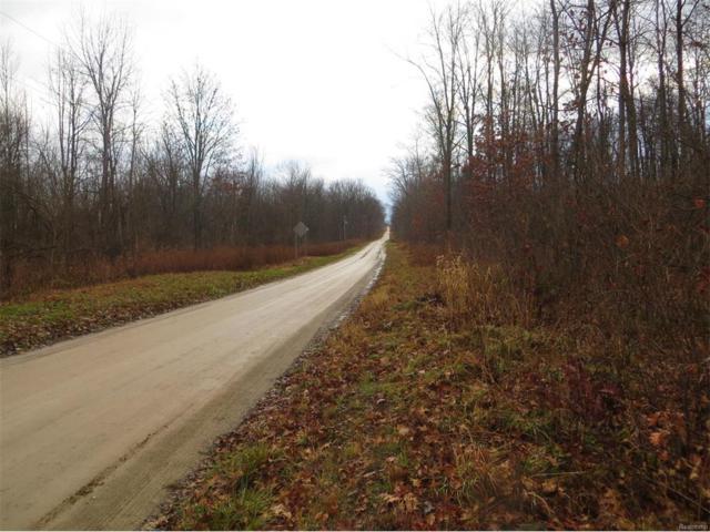 9000 N Rollin Highway, Woodstock, MI 49220 (MLS #543236732) :: The Toth Team