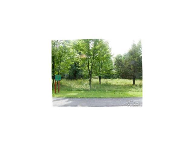 Arrowhead Drive 1-A, Chesaning Twp, MI 48616 (MLS #61031261771) :: The Toth Team