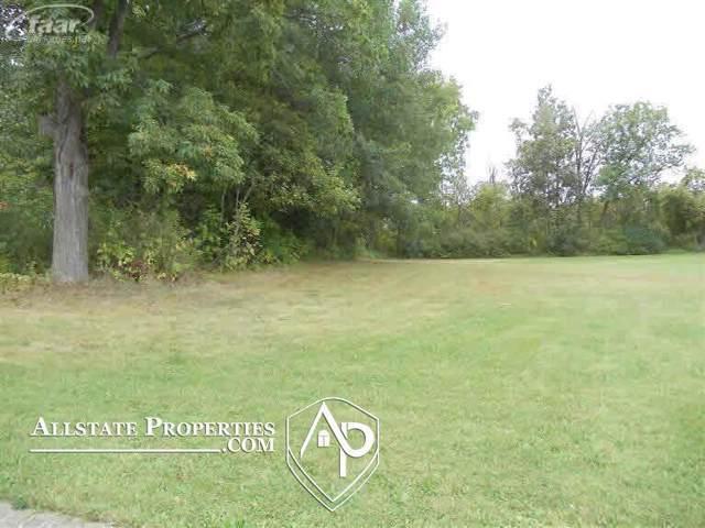 10440 Golfview Court, Davison Twp, MI 48423 (#5020293090) :: Alan Brown Group