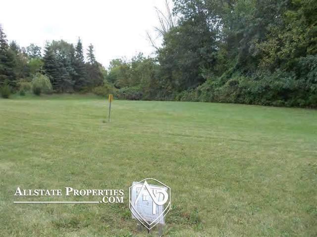 10460 Golfview Court, Davison, MI 48423 (#5020293091) :: Alan Brown Group