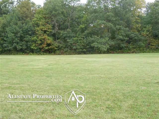10425 Golfview Court, Davison Twp, MI 48423 (#5020293089) :: Alan Brown Group