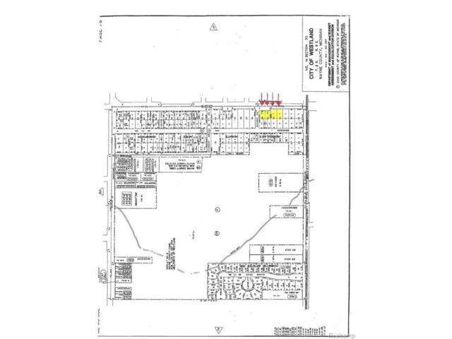 VACANT S Newburgh, Westland, MI 48186 (#212092835) :: RE/MAX Classic