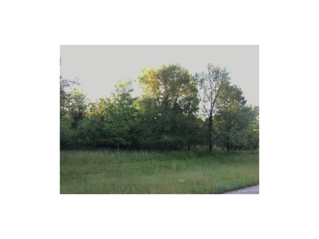 0 Craftsbury Court, Tecumseh Twp, MI 49286 (#217019802) :: The Buckley Jolley Real Estate Team