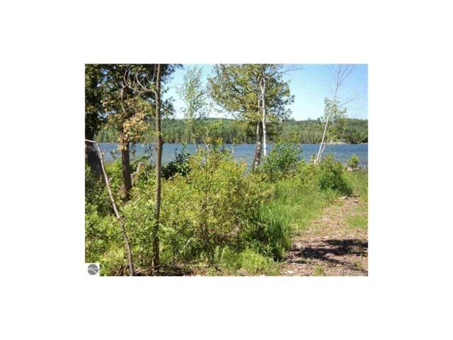 100Ft Lot 1 S Lake Leelanau Drive, Bingham Twp, MI 49653 (MLS #217052073) :: The Toth Team