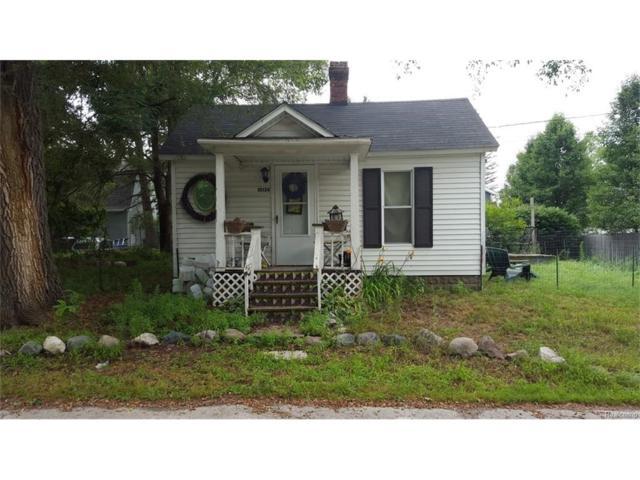 10130 Jackson, Hartland Twp, MI 48353 (#217066716) :: The Buckley Jolley Real Estate Team