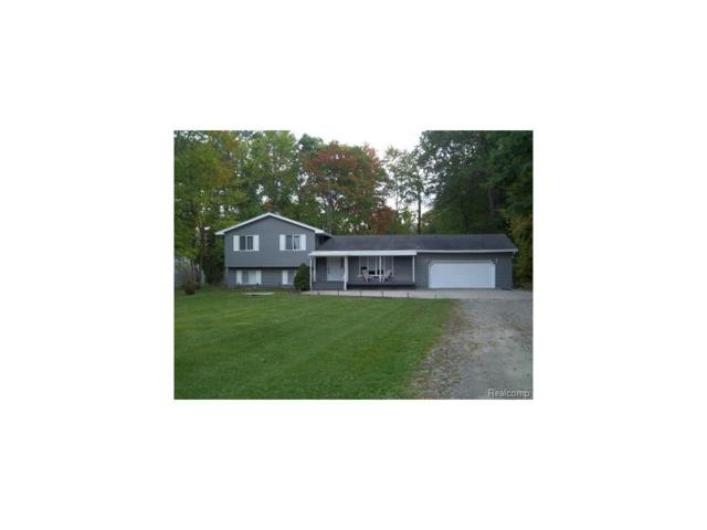 6223 Smith Road W, Linden, MI 48451 (#217079899) :: RE/MAX Classic