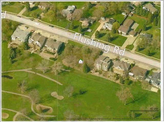 1372 Flushing Road, Flushing, MI 48433 (#5020457230) :: Real Estate For A CAUSE