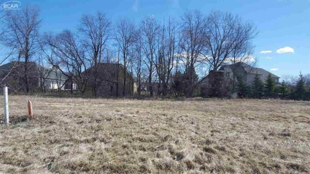 16437 Sleepy Hollow, Fenton Twp, MI 48430 (#5021271025) :: The Buckley Jolley Real Estate Team
