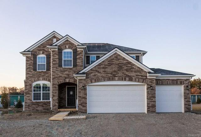 7646 Gannon, Shelby Twp, MI 48317 (#217096715) :: The Buckley Jolley Real Estate Team