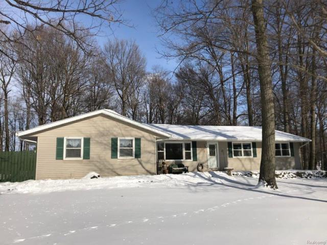 1275 Maple Grove Road, Lapeer Twp, MI 48446 (#217107400) :: The Buckley Jolley Real Estate Team
