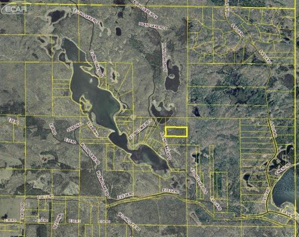 0 E Long Lake, Cadillac, MI 49601 (#50100000330) :: The Buckley Jolley Real Estate Team