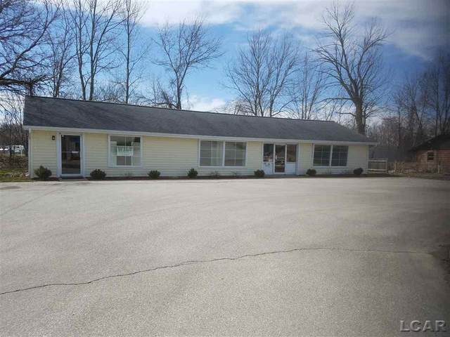 765 Manitou Road, Rollin Twp, MI 49253 (#56031345613) :: Real Estate For A CAUSE