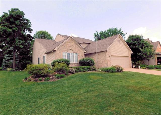 9552 Shelby Drive, White Lake Twp, MI 48386 (#218037250) :: Duneske Real Estate Advisors