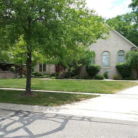 3184 Paramount Lane, Auburn Hills, MI 48326 (#218037769) :: The Buckley Jolley Real Estate Team