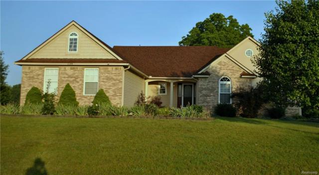11144 Saddlebrook Drive, Putnam Twp, MI 48169 (#218046179) :: The Mulvihill Group